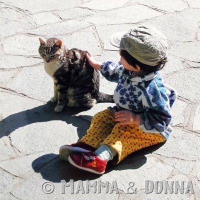 Perché ho insegnato a mio figlio ad accudire il gatto di casa