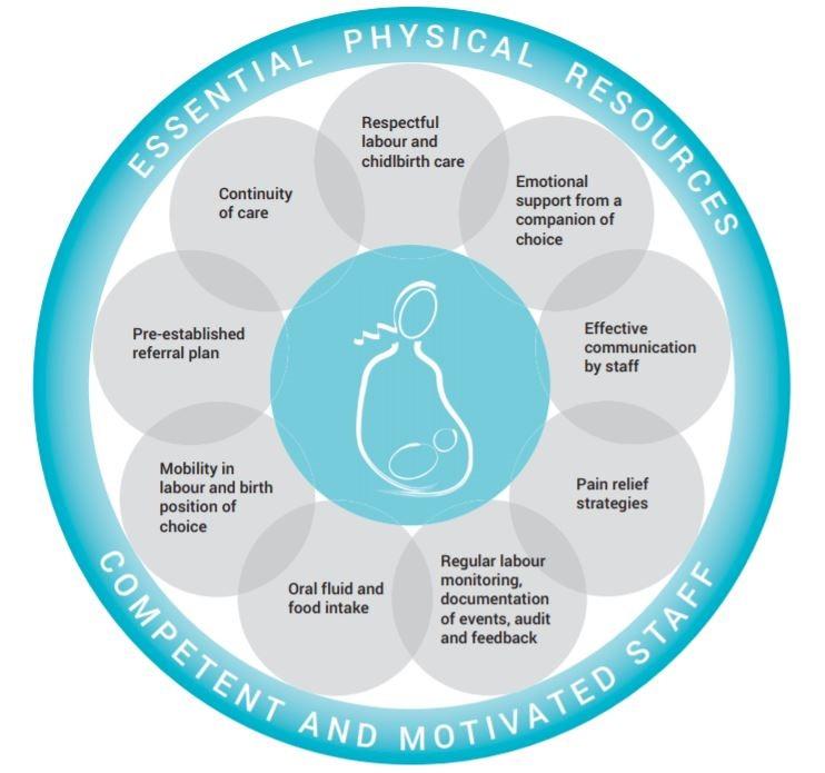raccomandazioni OMS per il parto 2018