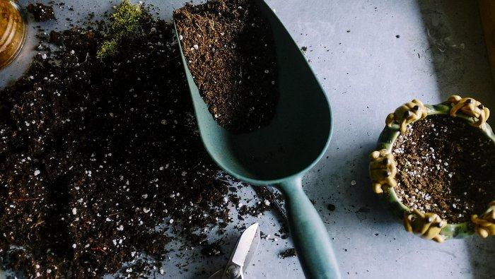 Primavera in arrivo - rinnovare terrazzo e giardino